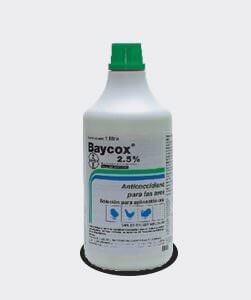 baycox25
