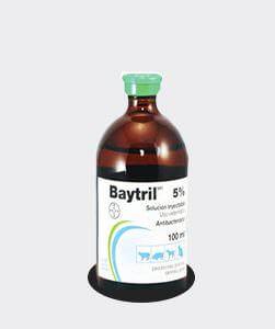 baytril5porciento